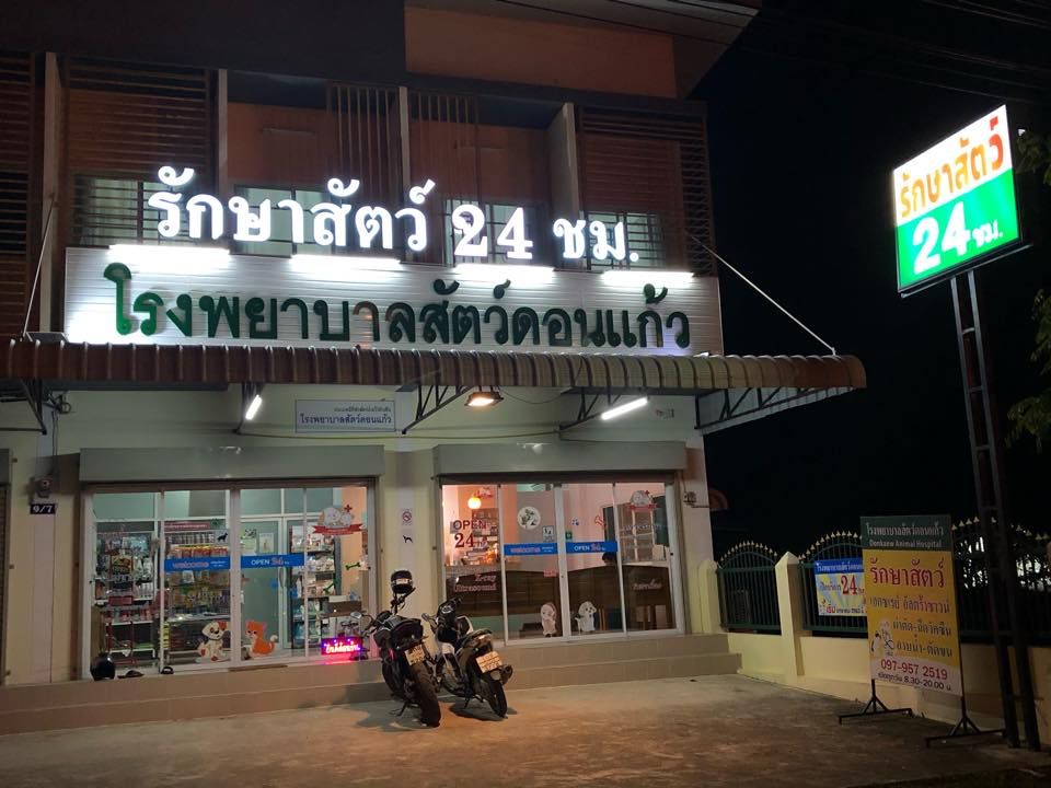 Don Kaew Animal Hospital, Chiang Mai serving the animals round the clock